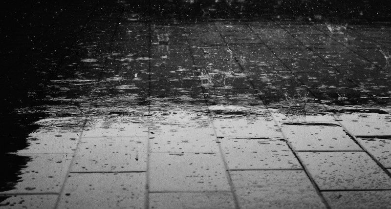 Skønne regnfrakker fra Blæst